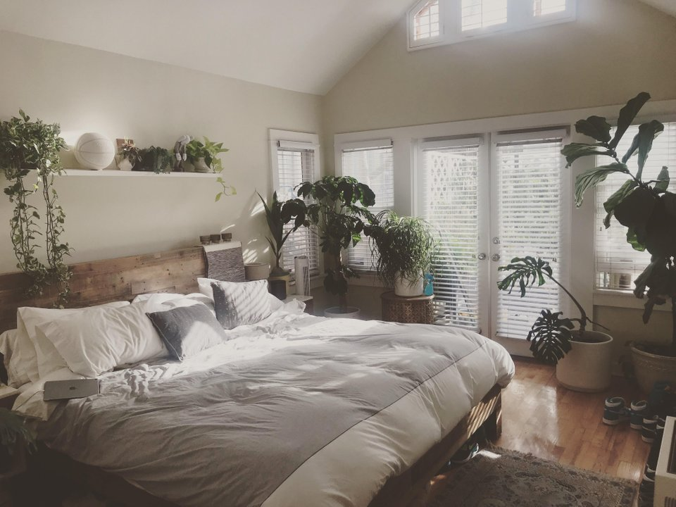 Reddit User Bonestown's bedroom with plants