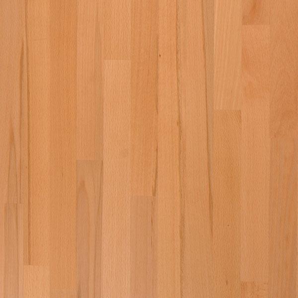 beech wood image