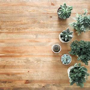 wooden floor with multiple flower pots on it